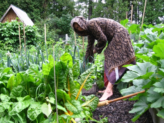Pan's Garden, 2011