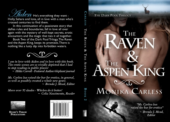 2017-02-03-carless-the-raven-final-kindle